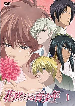 花咲ける青少年 DVD