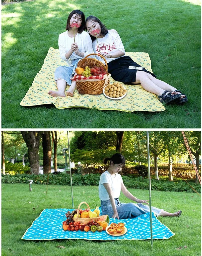 RXL Soft Picnic blanket outdoor picnic mat Camp picnic blanket moisture-proof picnic mat waterproof picnic blanket with Storage function Comfortable (Color : B) B