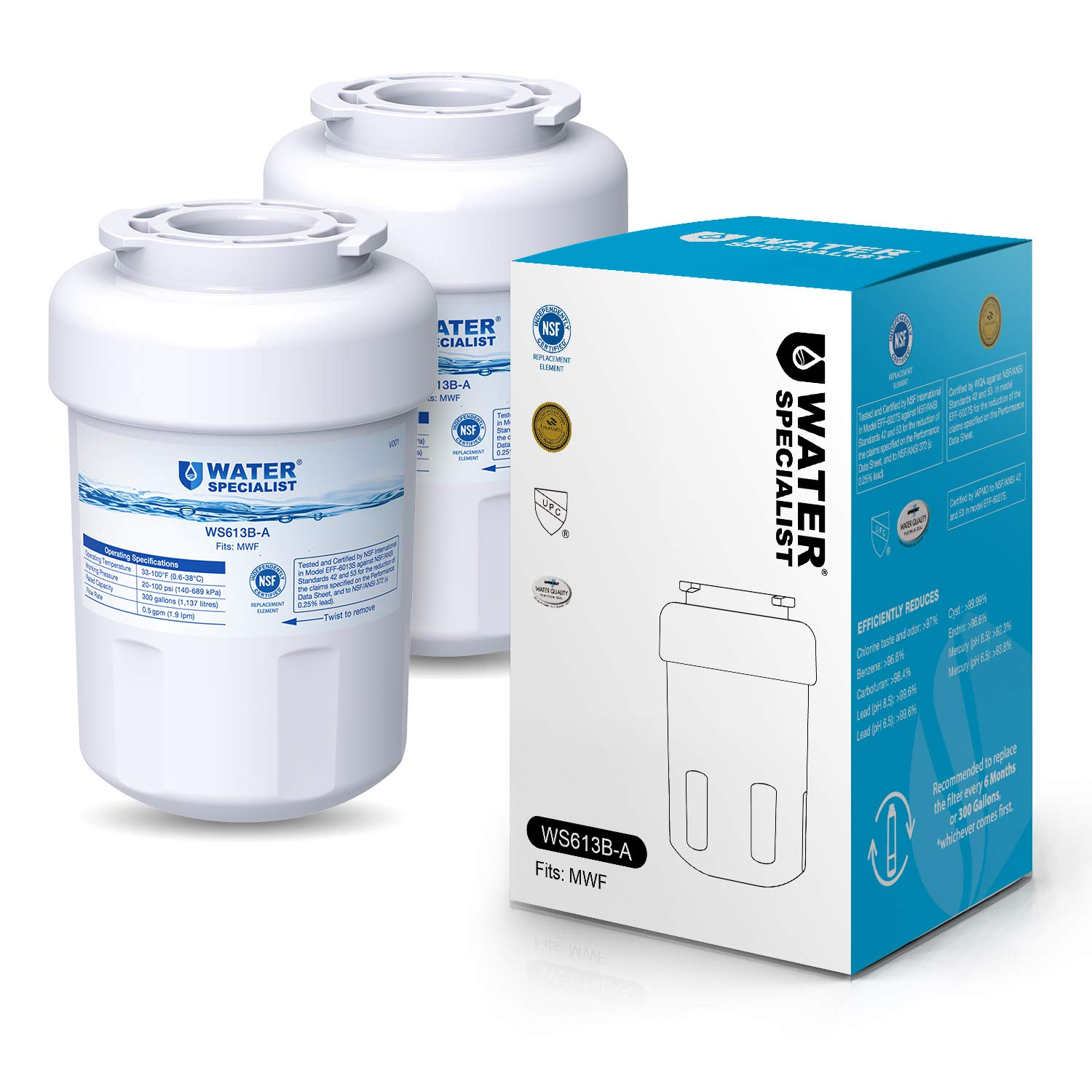 Waterspecialist NSF 53&42 Certified MWF Refrigerator Water Filter, Replacement for GE SmartWater MWFP , MWFA, GWF, HDX FMG-1, WFC1201, GSE25GSHECSS, ...