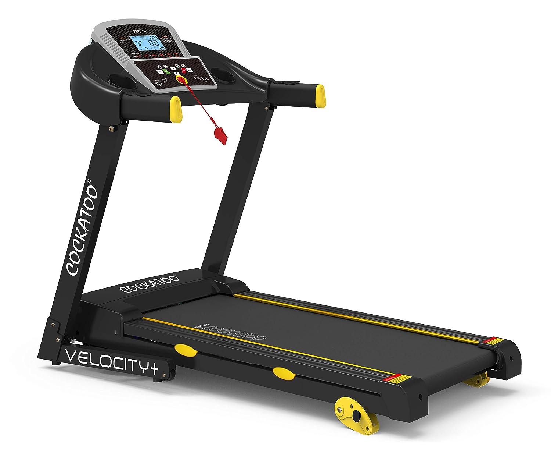 Cockatoo Velocity Steel DC Motorized Treadmill (Free