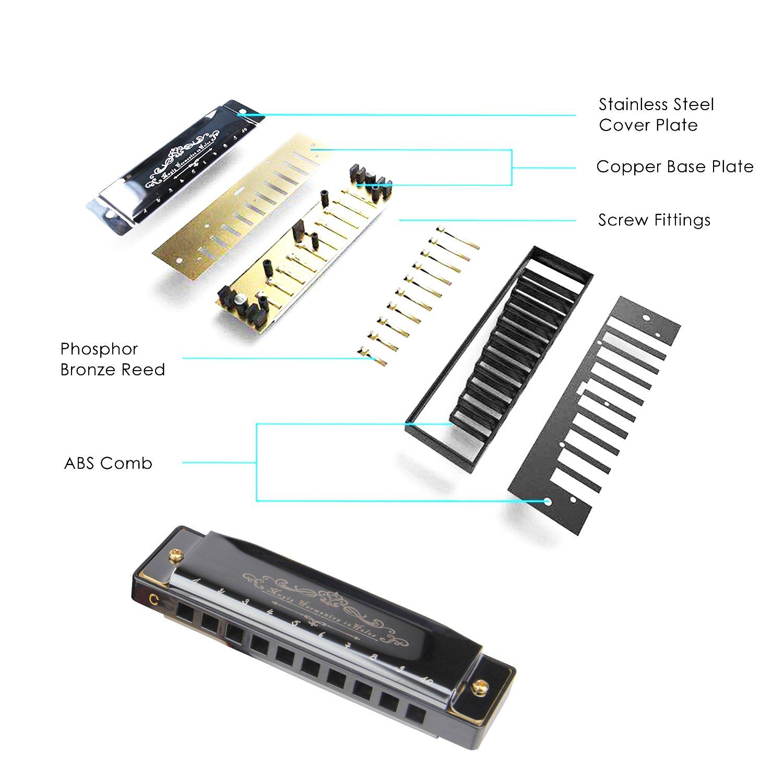 Mugig Harmonica Blues en Do 10 Trous Chrome avec Etui, Frettes en Bronze Phosphoreux, Facile à Nettoyer et Entretenir, pour Les Débudants et Enfants