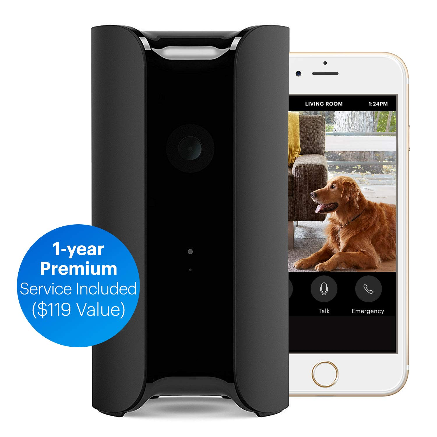 Canary: All-in-One WiFi Wireless Home Security Camera | Built in Siren, Climate Monitor, Motion, Person Sensor, Air Quality Alerts | Alexa -Insurance (Single + 1 Year Membership)