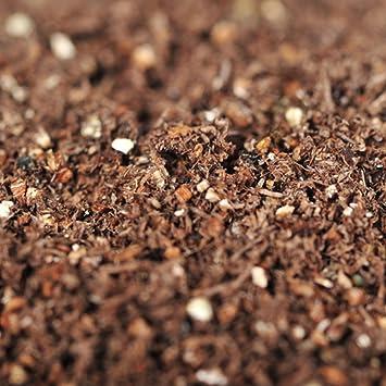 Fácil ir de compras Bonsai turba suelo para plantar semillas: Amazon.es: Jardín