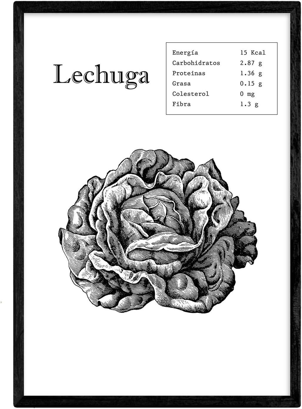 Nacnic Poster de Lechuga. Láminas de Frutas y Verduras. Tamaño A4