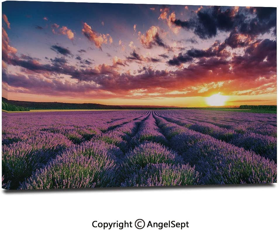 """Modern Gallery Wrapped Blooming Fields in Endless Rows Agriculture Aromatherapy Rural Countryside Image Pictures on Canvas Wall Art Ready to Hang for Living Room Kitchen Home Decor,12""""x18"""",Multicolo"""