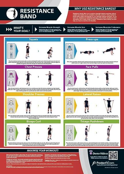 Banda de Resistencia gimnasio Póster | entrenamiento completo | mejora la fuerza formación | laminado de gimnasio y Home Póster | soporte de formación de ...
