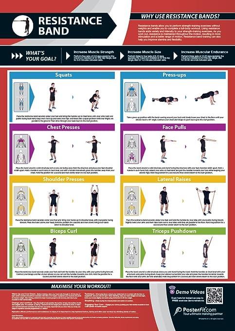 Banda de Resistencia gimnasio Póster | entrenamiento completo | mejora la fuerza formación | laminado de ...