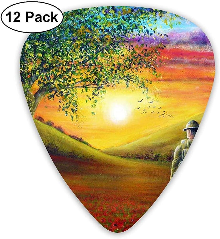 Púas para guitarra Sunset Time Sampler Púas para guitarra: paquete de 12 incluye medidores delgados, medianos y pesados