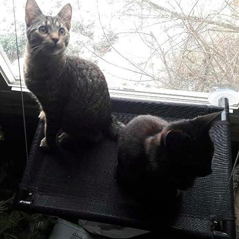 TIAMO Gato Hamaca Suspensión de la ventana Tipo de lechón Cama colgante Puede dejar gato Catar