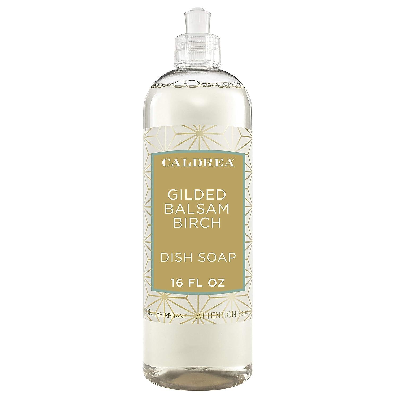 Caldrea Dish Soap, Gilded Balsam Birch, 16 oz