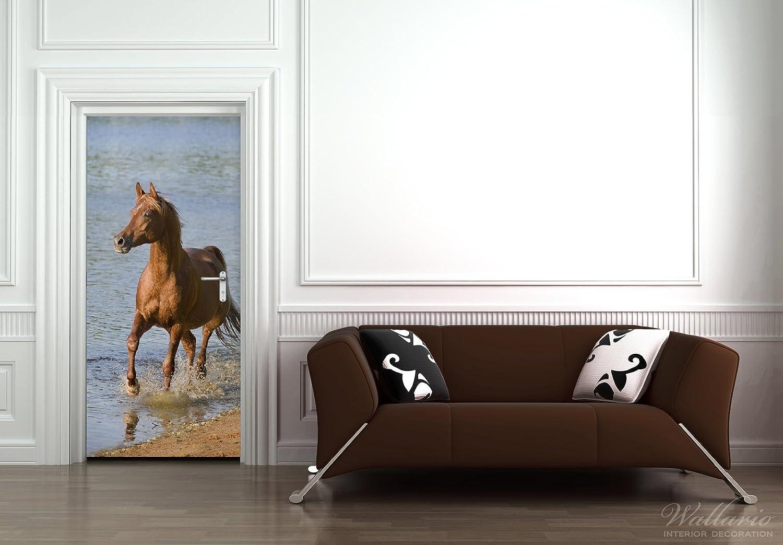 Wallario Selbstklebende Türtapete Türtapete Türtapete Braunes Pferd am Meer Araber am Wasser - 93 x 205 cm in Premium-Qualität  Abwischbar, brillante Farben, rückstandsfrei zu entfernen 636b99