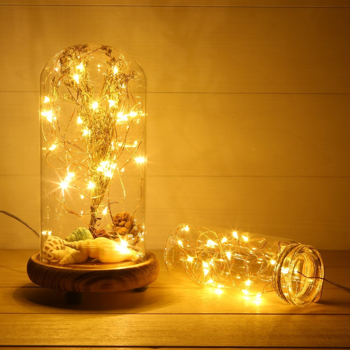Amazon.com : ANJAYLIA LED Fairy String Lights, 10Ft/3M 30leds ...