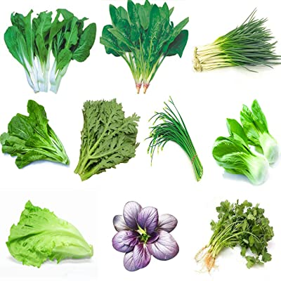Garden Vegetable Green Organic Chinese Seeds 10 Different Varieties Qty 5000+ for Planting Outside Door for Cooking Dish Soup Taste Good Delicious 100% Non-GMO by Kuting (10 Varieties-A) : Garden & Outdoor