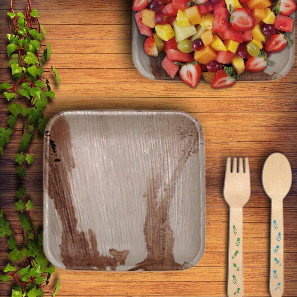 B/üro und Festen|Biologisch abbaubar Wegwerfgeschirr CaterEco 50 Quadratische Palmblatt Einwegteller|25 cms einweg-teller und 17 cms einweg-salatteller|kompostierbares Einweggeschirr f/ür Hochzeit