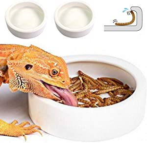 Reptile Water Food Bowl, 2PCS Worm Dish Ceramic Pet Bowls, Anti-Escape Mini Reptile Feeder, Mealworms Bowl for Lizard Bearded Dragon Gecko Chameleon Hermit Crab Dubia Reptile Rock Cricket Dish