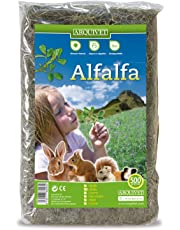 Arquivet 8435117860032–Alfalfa 500Grs