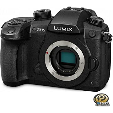 top best Panasonic Lumix GH5