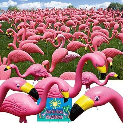 """Bloem Pink Flamingo 25"""" Statue (50-Pack) : Garden & Outdoor"""