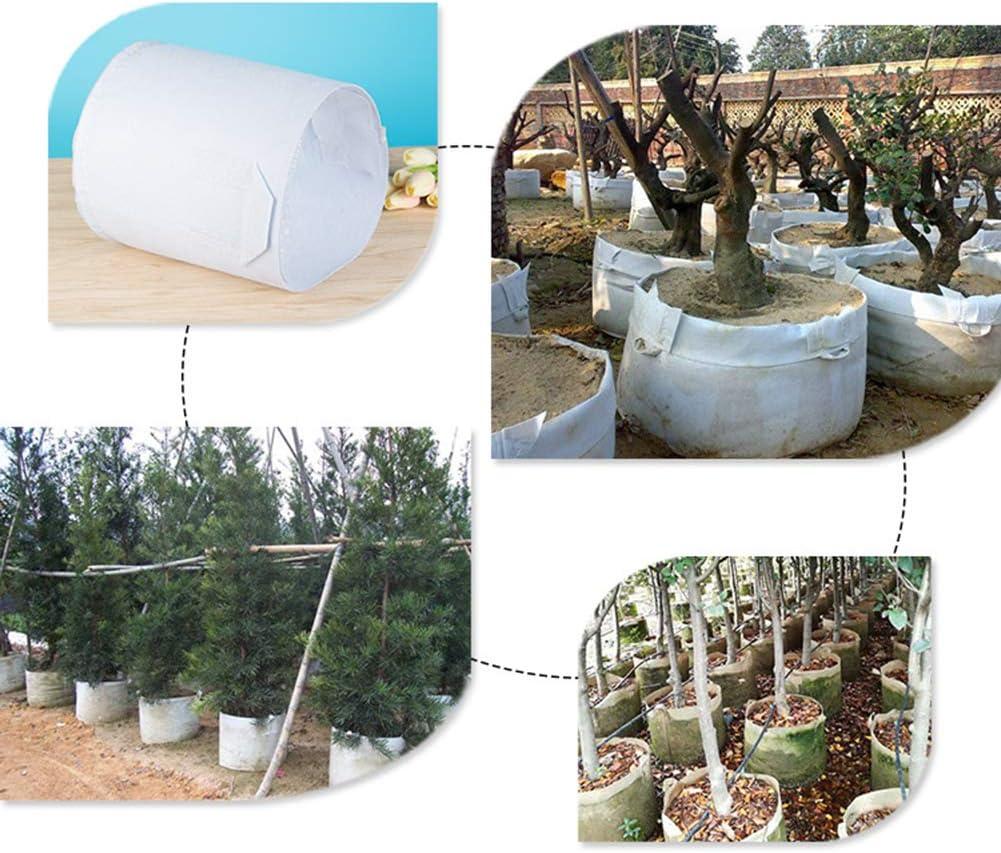 tomates 5 Gallon Blanc lulalula Lot de 10 Sacs de Plantation en Tissu Non tiss/é biod/égradables avec poign/ées Robustes pour Arbres l/égumes