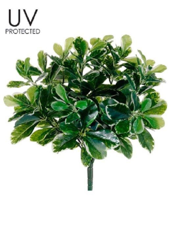 16.5'' Uv Outdoor Baby Schefflera Bush (pack of 6) Artificial Plants Patio Pool by Black Decor Home