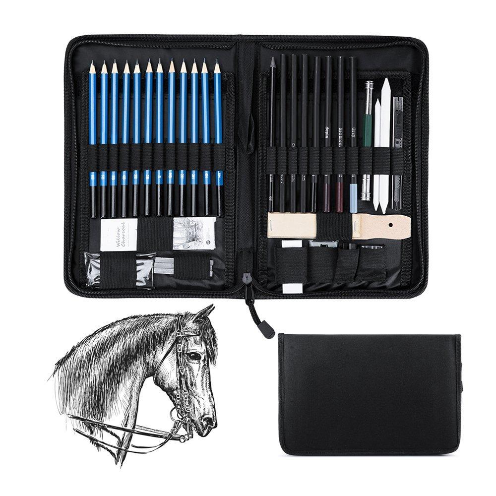Wonyered 40-pack Professional Art set matite matite da disegno set Charcoals matite di grafite forniture strumenti con bastoncini e kit bag
