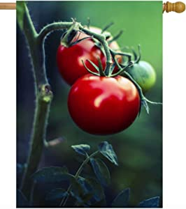 Pickako Exotic Beautiful Red Tomato on Tree Summer Spring Agriculture Farm House Flag 28 x 40 Inch, Double Sided Large Garden Yard Welcome Flags Banners for Home Lawn Patio Outdoor Decor