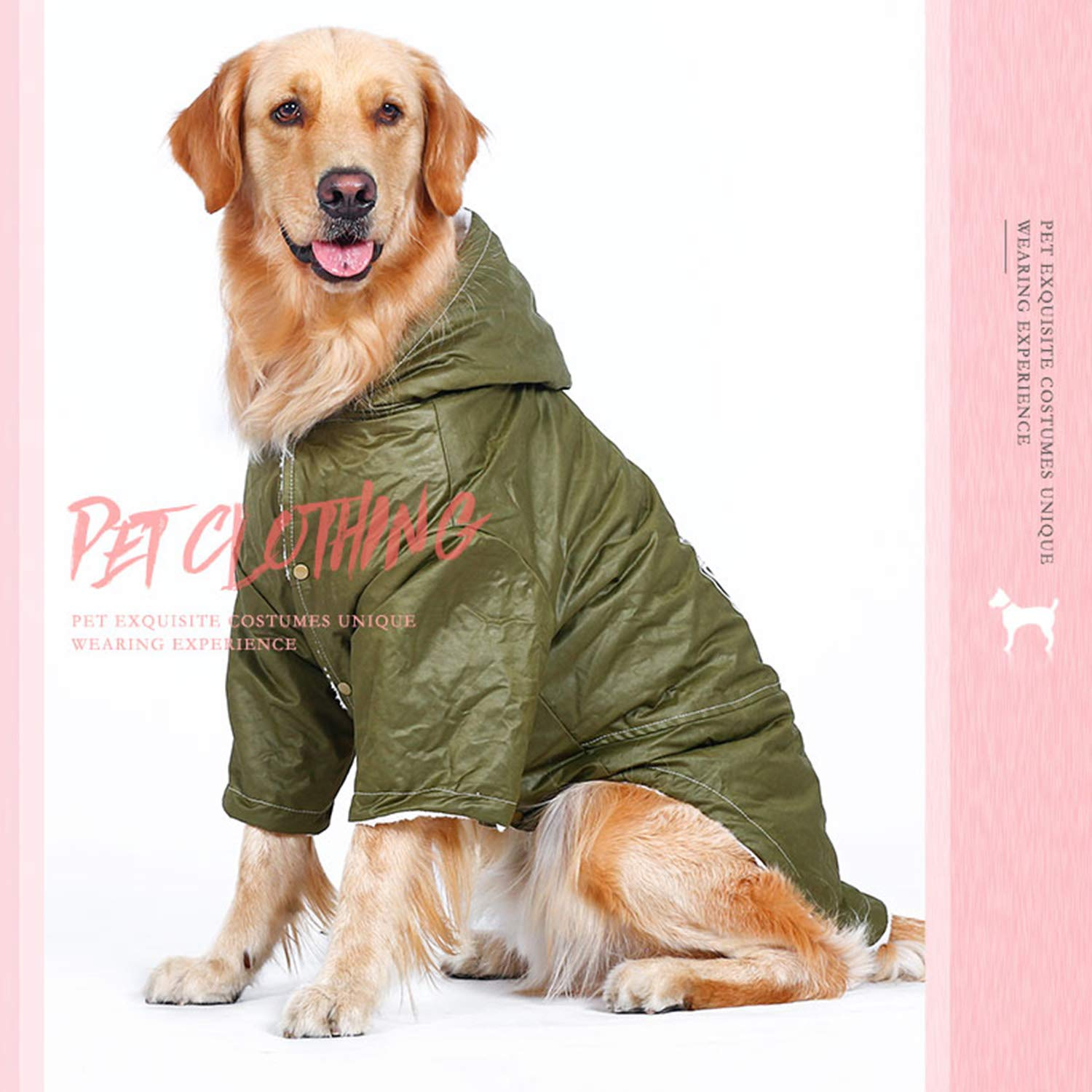 XXL Big Dog Plus Velvet Trench Coat Warm Autumn and Winter Clothing Dog Clothes golden Wool Coat Two-Legged Clothes Hooded Pet Clothing