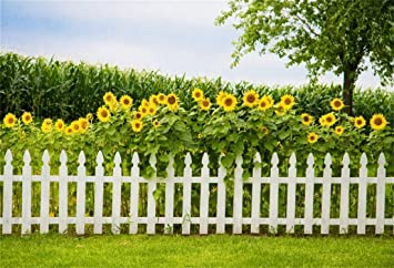 Zhy Spring Nature Landscape Backdrop 7X5FT Yellow Blooming Flowers Photography Background YouTube Photo Studio Prop Wallpaper LLST137