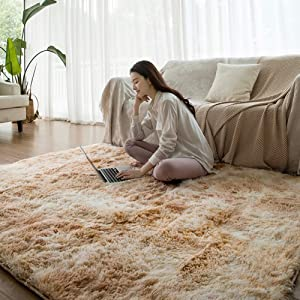 qwqqaq Thicken Shaggy Area Rug, Luxury Fluffy Floor Rug Shag Durable Carpets Solid Color Floor Rug Bedside Rugs for Bedroom Home-d 100x160cm(39x63inch)