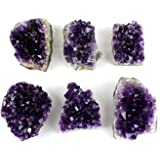 Crystal Allies 1lb of Medium Natural Amethyst Druze Clusters from Uruguay w/Authentic Stone Info Card …