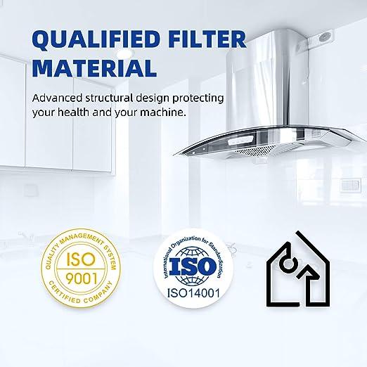 GOLDEN ICEPURE 2 filtros de carbon activo para extractores - 210 mm diámetro: Amazon.es: Grandes electrodomésticos