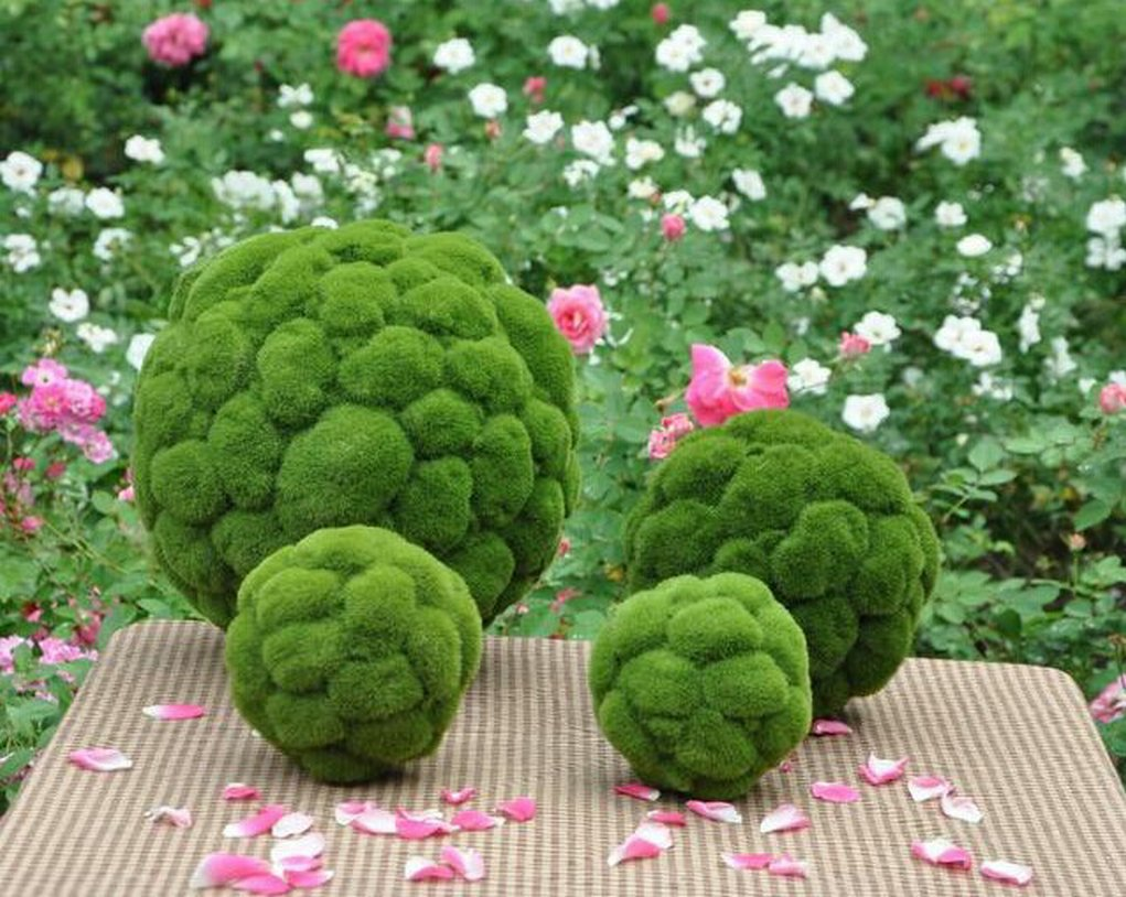 Artificial Moss Grass ball Faux Topiary Ball house garden hotel decor 3.9''-20'' (1pc 50cm(20'')) by moss ball 3.94''--20'' (Image #2)