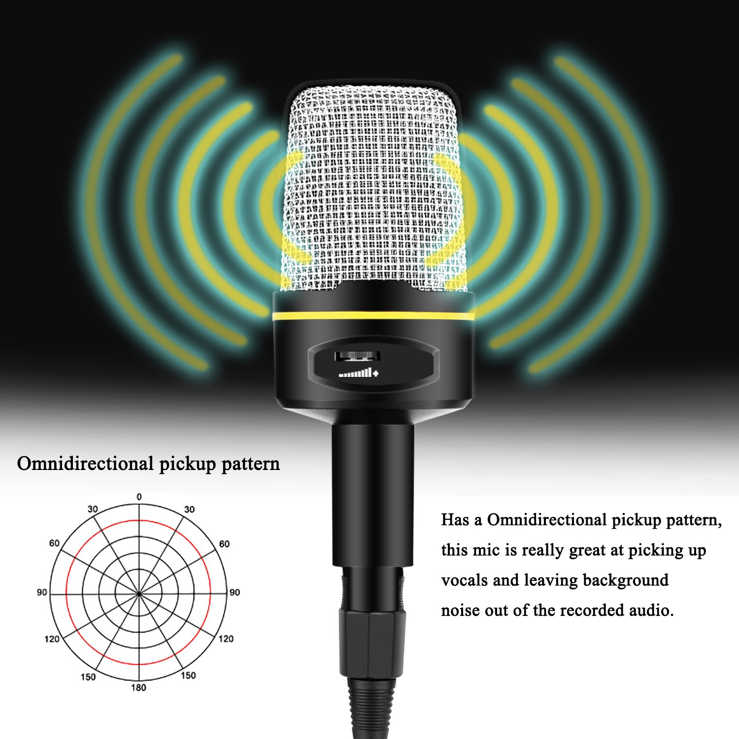 USHAWN Condenser Microphone Professional Studio Recording Mic with Tripod  Stand for Broadcasting, Chatting, Interview, Video Conference, YouTube