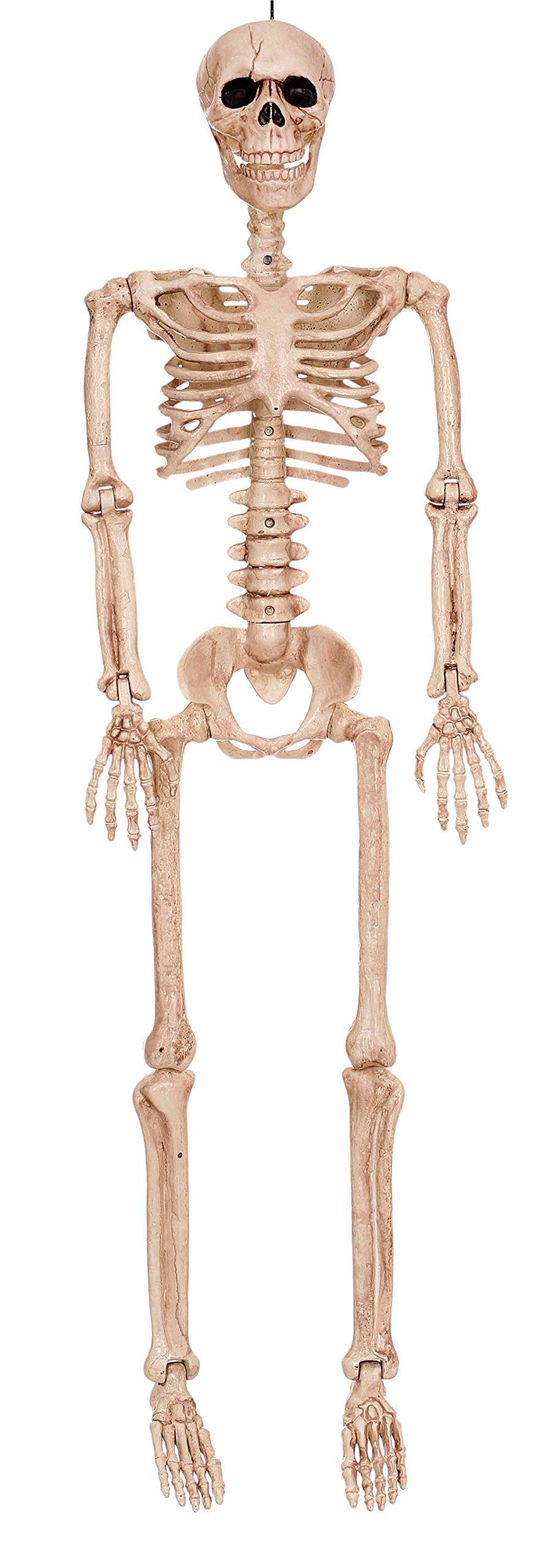 Crazy Bonez Posable Skeleton Decoration, 36''