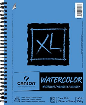 Canson Standard Size Heavyweight Fine-Textured Paper For Watercolor