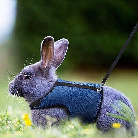 Haustier-Leine-Geschirr-Geschirr-weiche Breathable Kaninchen-Hamster-Kaninchen-Hunde f/ür gehende dauerhafte Weste im Freien