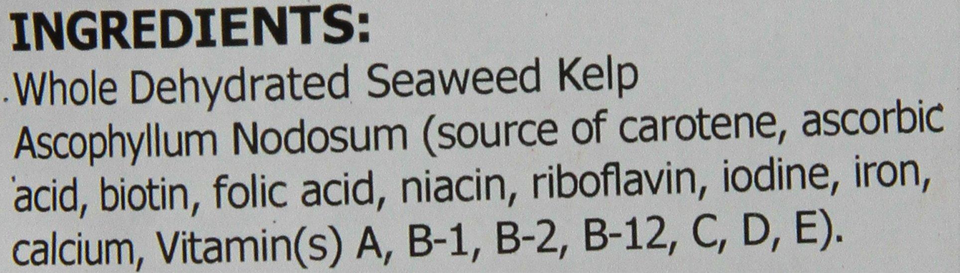 Thomas Laboratories C-Kelp Nutritional Supplement Powder, 16-Ounce