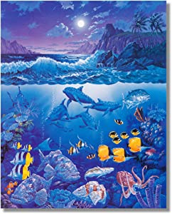 Tropical Bay Ocean Fish Dolphins Shark Coral Reef Wall Picture 8x10 Art Print