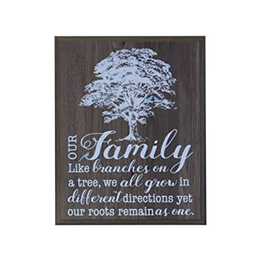 LifeSong Milestones Our Family Like Branches on a Tree Gift for Husband Wife Parents, Best Friend, and Christian Gift Ideas 12 Inches Wide X 15 Inches High Wall Plaque (Salt Oak)