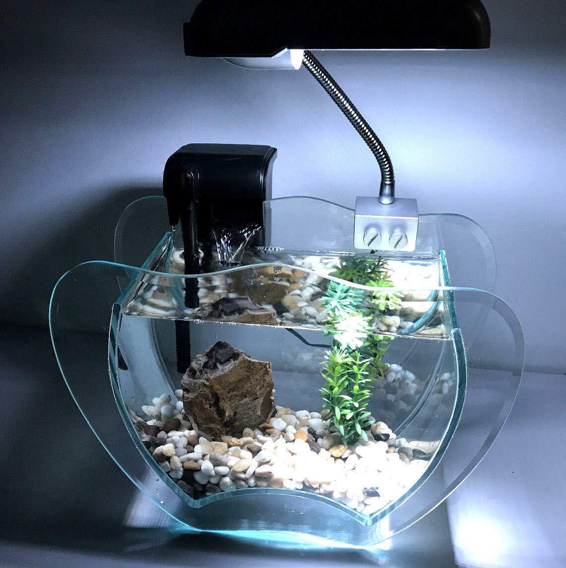 Generic D lamp, rock pump, filter, ilter, gravel, LED lamp, Aquarium complete set Aquarium co gravel, LED ump, filte garnet with complete lamp, rock