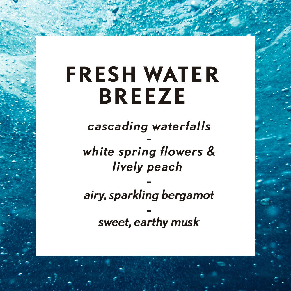 Air Wick Essential Oils Diffuser Mist Refill, Fresh Water Breeze, 3 Count by Air Wick (Image #4)