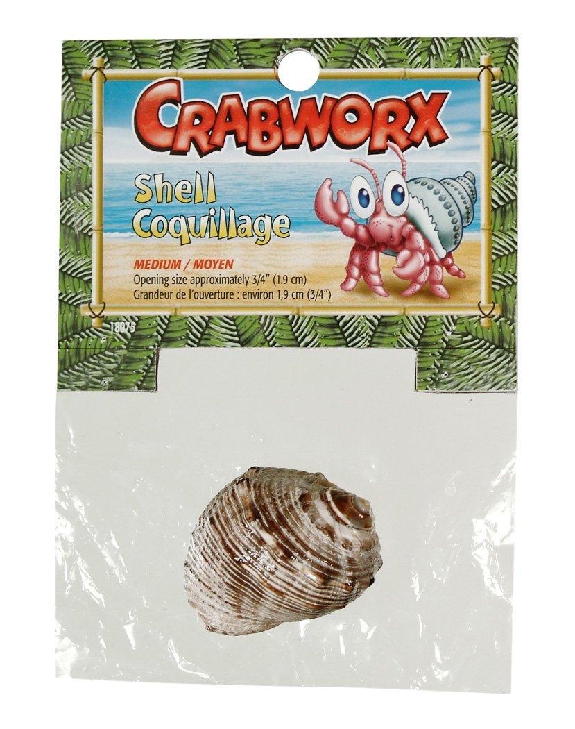 Crabworx Shell Medium