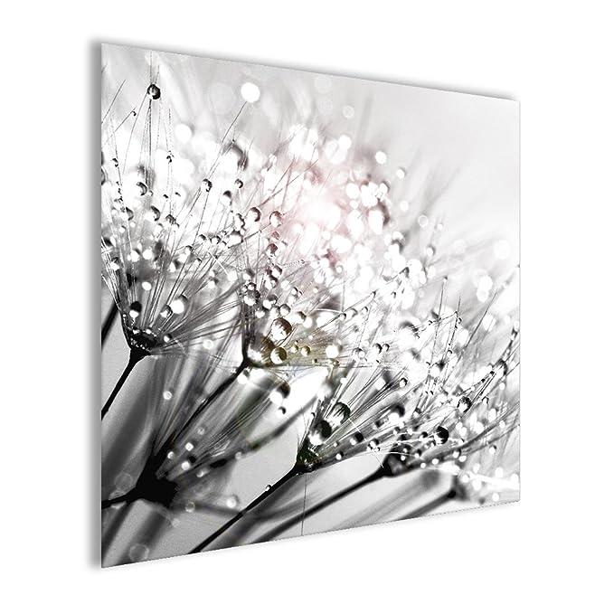 Wandbild Bild aus Glas artissimo Pusteblume II 20x20cm schwarz-wei/ß AG4054A Blumen-Bild Glasbild Moderne Wanddekoration aus Glas