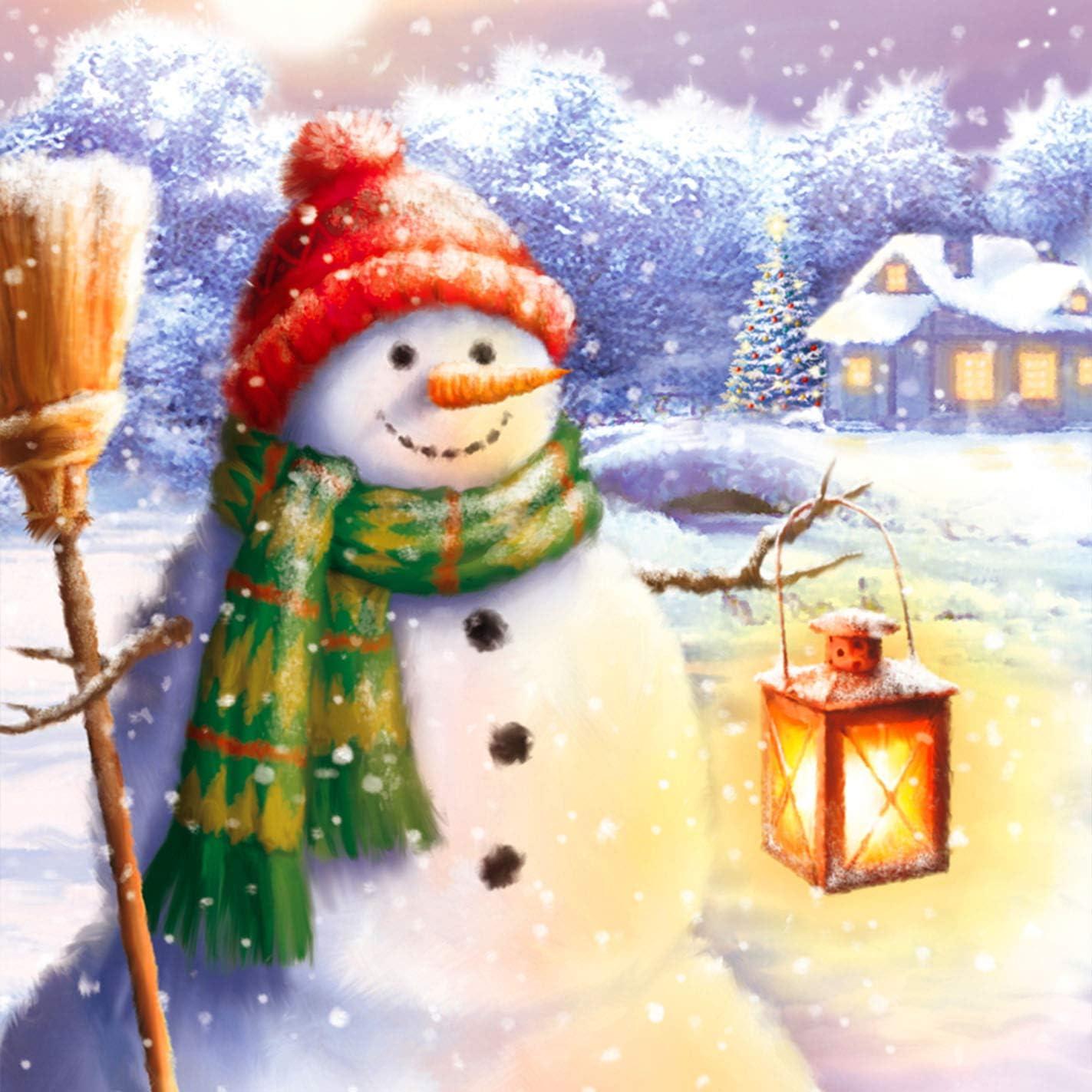Pintura Diamante Bricolaje Completo Taladro Arte Navidad Christmas Diamantes Bordado Pegatinas de Pared Decoraci/ón de La sala 30x40cm Reofrey 5D Diamond Painting Mu/ñeco De Nieve Linterna Snowman