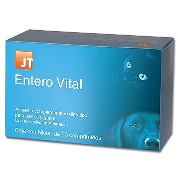 JTPharma 163055 Enterovital - 60 Comprimidos: Amazon.es: Productos para mascotas