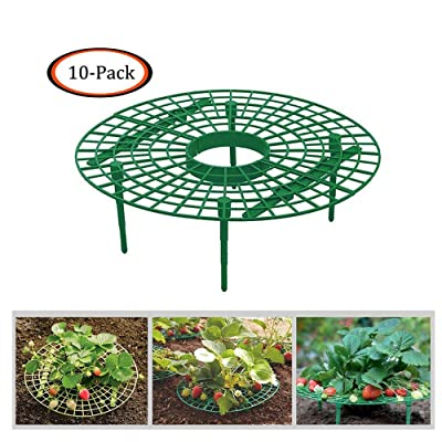 gugs Strawberry Supports Keeping Fruit Elevated to Avoid Ground Rot, Removable Strawberry Growing Supports 10 Pack/1Pack (10PCS) : Garden & Outdoor