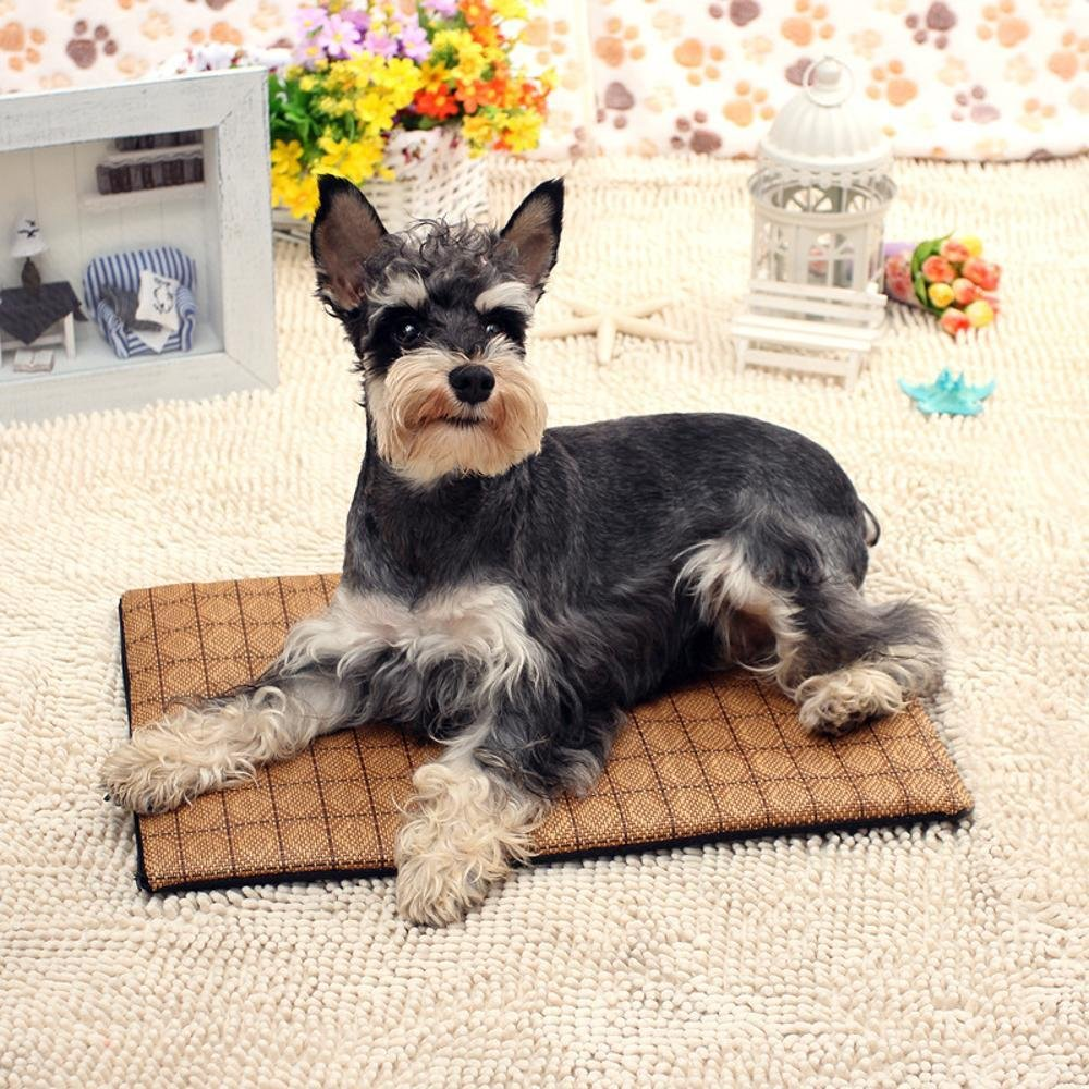 70552cm Dixinla Pet Bed Washable pet DoubleSided Rattan mat mat cat Kennel mat air Conditioning Sleeping Cushion Cushion Pet Supplies