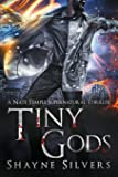 Tiny Gods: A Nate Temple Supernatural Thriller Book 6 (Temple Chronicles)