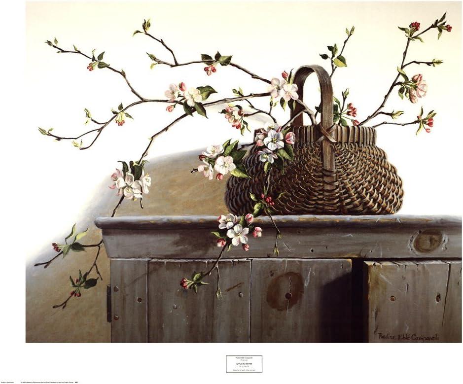 Apple Blossoms by Pauline Eble Campanelli Art Print, 36 x 30 inches