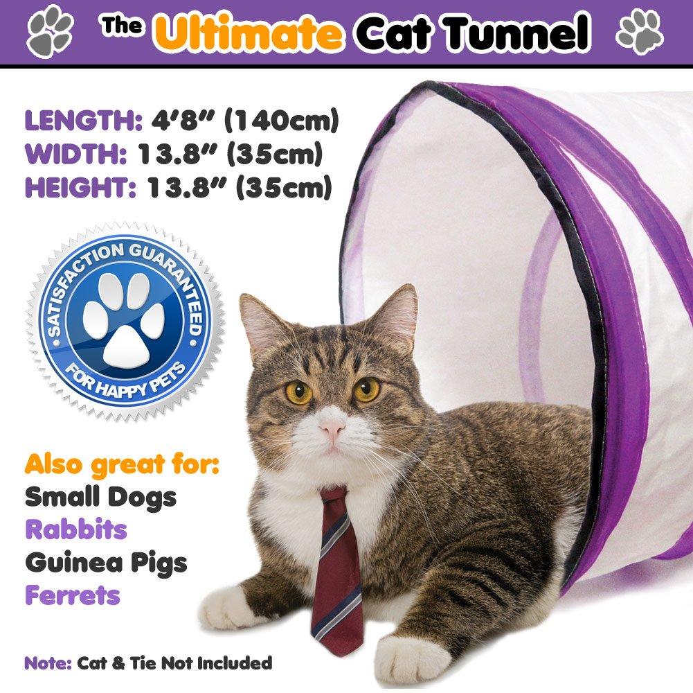 Grandiose Katzentunnel – Neuartige Faltbare Geknister Knauschtig Rolle Lustig Run Spielzeug! Passende für ALLE Katzen! Sie werden sie sicherlich lieben! Pets Can Play